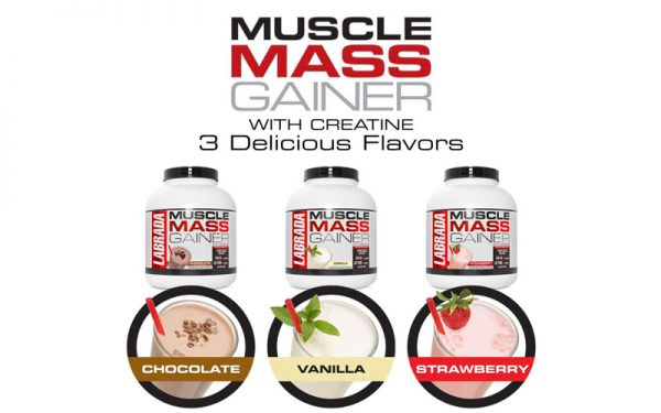 Mùi vị Muscle Mass Gainer