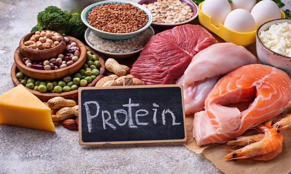 Cung cấp đủ protein
